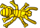 category-arthropods-08.png