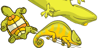 category-reptiles-04.png