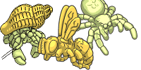 category-arthropods-03.png